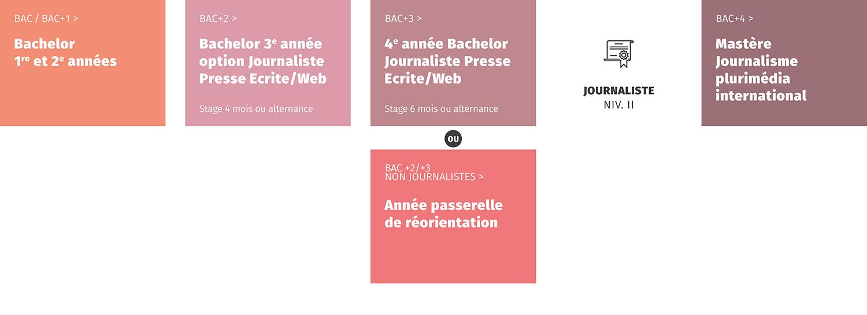 Journaliste presse écrite et web