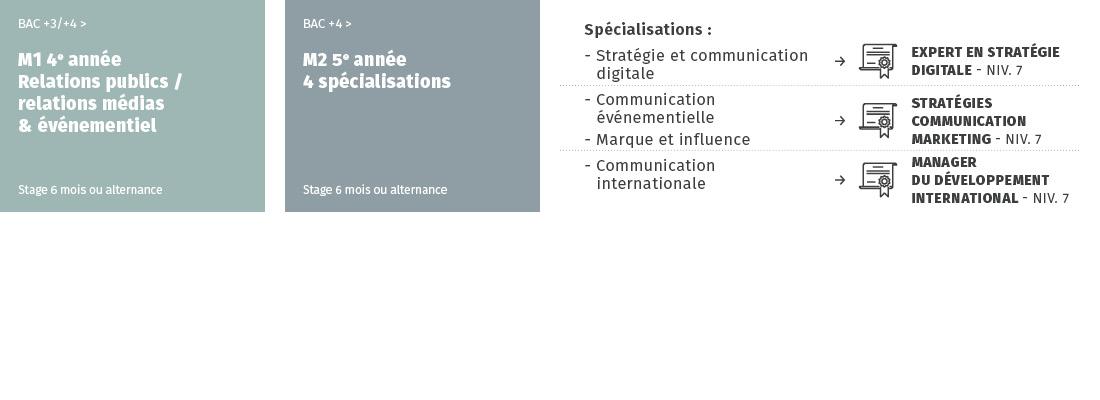IICP schéma mastère communication