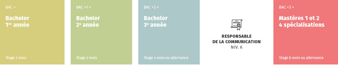 IICP schéma bachelor communication